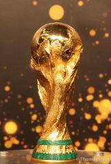 FIFA WM Trophy